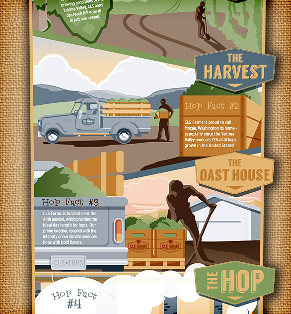 hops infographic