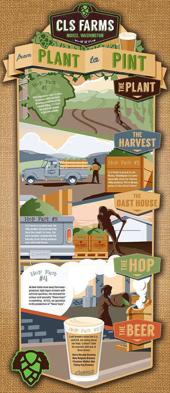 From plant to pint infographic