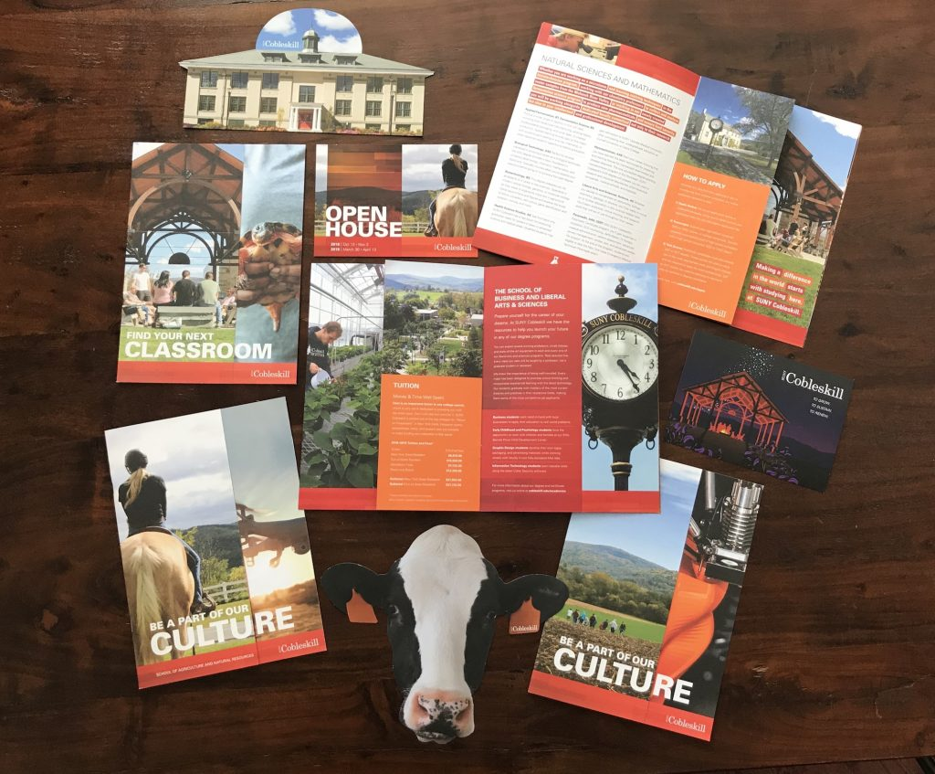 Nine pieces of print collateral for SUNY Cobleskill displayed on a table. Two very pronounced pieces include a diet cow and a die cute of a building on campus with a cupola.