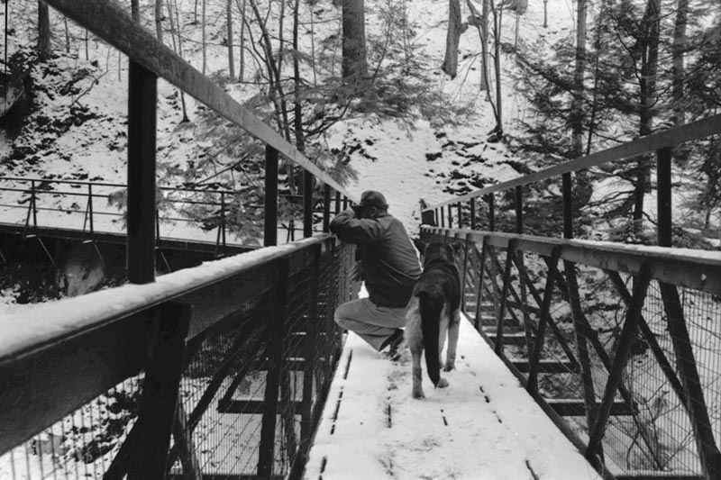Dog and Man on footbridge over Gorge