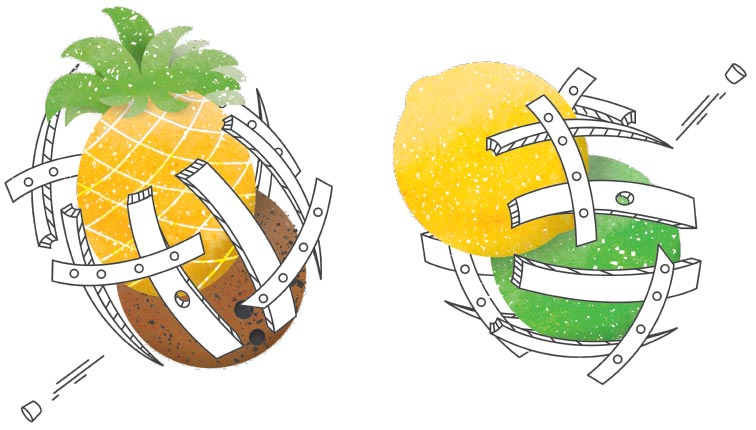 Mean Max Barrel with Fruit Illustrations